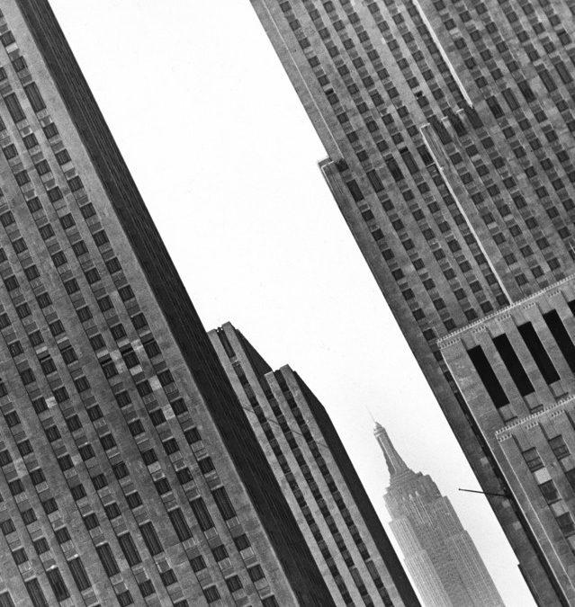 Fred Stein – Les penchants de Fred Stein